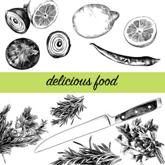 lemon pepper parsley onion knife green sketch vector graphics monochrome black-and-white drawing