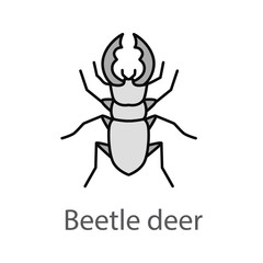 Stag beetle color icon