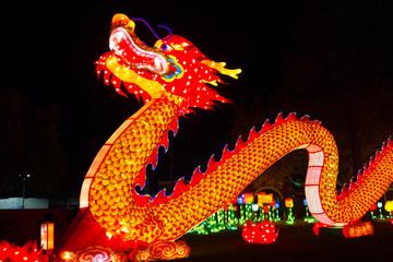 Dragon Chinese Lantern Festival