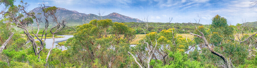 Tidal River trail panoramic view in Wilsons Promontory park, Australia Wall mural