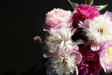 bukiet różowych i białych piwonii na czarnym tle