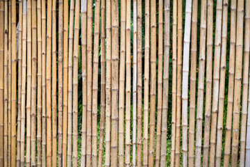 Bamboo fence background and textures.