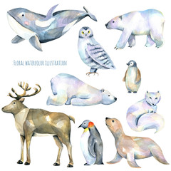 Collection, set of watercolor cute polar animals illustrations, hand drawn isolated on a white background