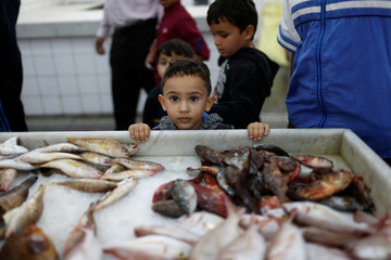 A Libyan child is seen at the fish market in Tripoli