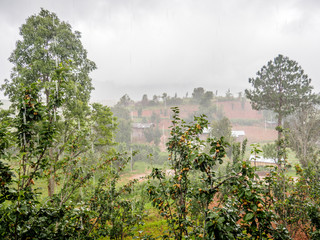 Rainy Season in Myanmar