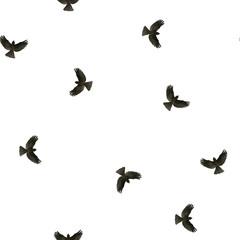ink watercolor bird seamless pattern