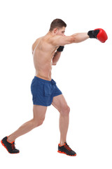 A guy boxer with boxing gloves makes a right-hander blow. Isolated.