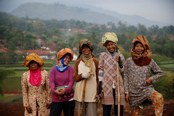 Women villagers pose for a picture while planting beans at Cikawao village in Majalaya, West Java province