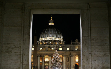 The Vatican Christmas tree is lit up after a ceremony in Saint Peter's Square at the Vatican