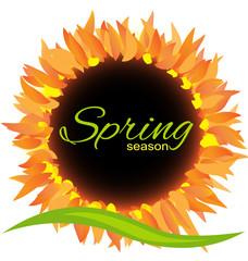 Sunflower spring season icon decoration vector design