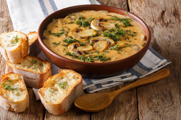 Hungarian delicious thick mushroom soup with fresh dill in a bowl and toast close-up. horizontal