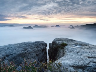 View over sharp sandstone edge into long valley full of first autumnal mist. The misty forest valley of national park i