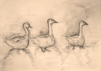Three gooses in sepia tones. The dabbing technique gives a soft focus effect due to the altered surface roughness of the paper.
