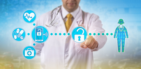 Physician Accessing Electronic Medical Records