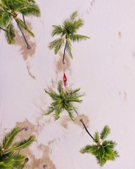 Aerial view of a woman on a hammock on the beach, Waikiki, Honolulu, Hawaii, America, USA