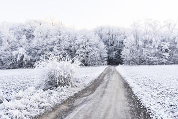Frozen landscape around Karlstejn Castle in Beroun district, located about 30 kilometres southwest of Prague.