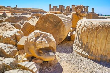 The ruins of Apadana, Persepolis, Iran
