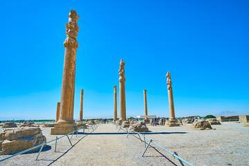 The tall columns of Apadana, Persepolis, Iran