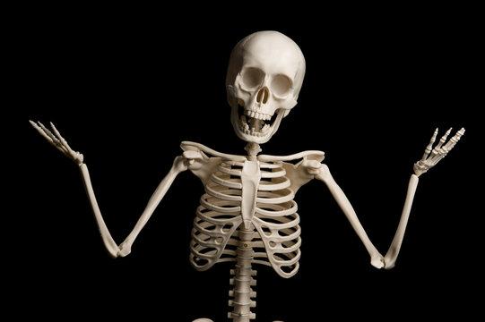 Portrait of surprised skeleton standing over black background.