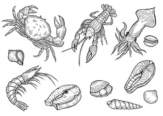 Marine Healthy seafood
