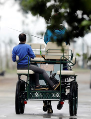 A dog is seen on the back of a carriage in Sao Paulo