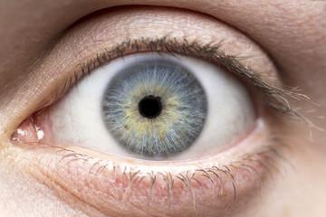Deurstickers Iris Macro photo of human eye, iris, pupil, eye lashes, eye lids.