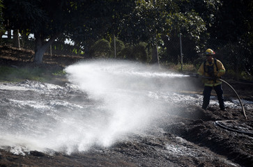 A firefighter puts out a hotspot at an avocado farm after the Lilac Fire, a fast moving wildfire in Bonsall, California