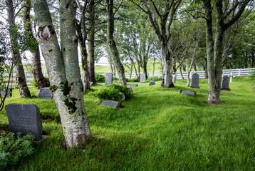 Printed roller blinds Cemetery Cemetery near Stafafellskirkja in Iceland