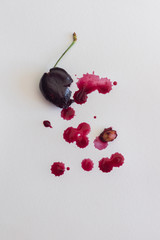 watercolour art with food, cherry