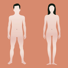 Body shape of man and woman Template