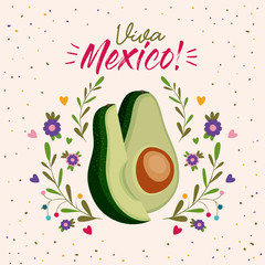 viva mexico colorful poster with middle avocado and slice vector illustration