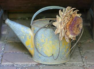 Alte Gießkanne aus Blech mit einer Blume