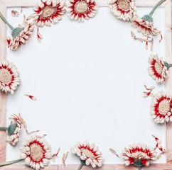 Frame of pretty red white flowers on blank white chalkboard background, top view. Creative floral layout