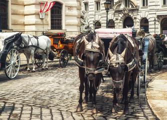 Wien Fiaker,Horse drawn carriage