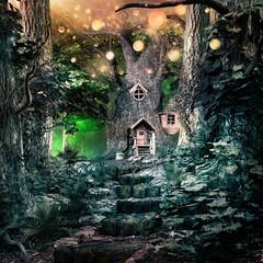 Stairs to magic tree