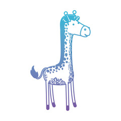 giraffe cartoon in degraded blue to purple color silhouette vector illustration