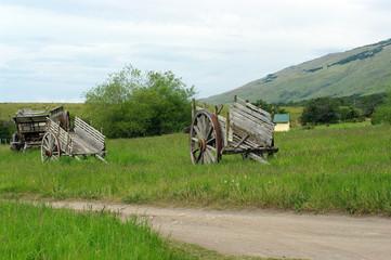 Carriole dans la prairie