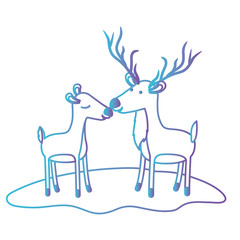 deer couple over grass in degraded blue to purple color contour vector illustration