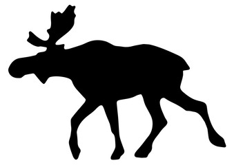 Elk/Moose Vector