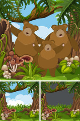 Grizzly bear family in the jungle