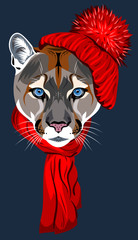 puma, in a knitted red hat with a pompon and scarf