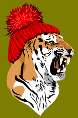 tiger, in a knitted red hat with a pompon