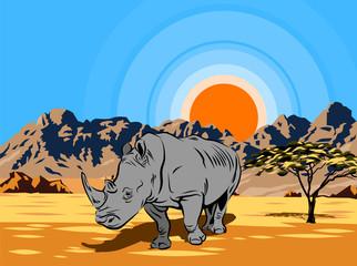 Rhinoceros in the desert