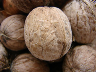 Appetizing Walnut in the shell, eco-friendly, natural, close-up. Many walnuts. Nuts in a box. Texture nuts