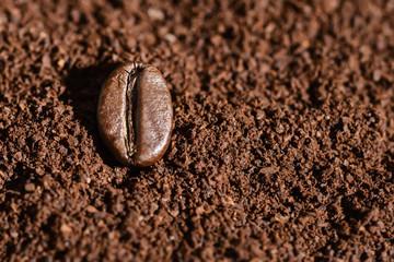 Grain of roasted brown coffee lies on freshly ground coffee, background