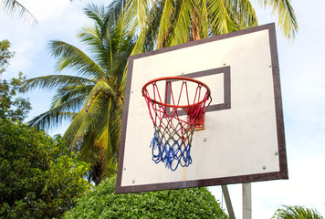 Basketball equipment on tropical island. Empty basket. Outdoor sport game.