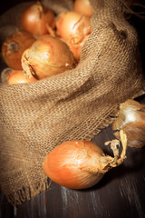 Yellow onions in a burlap sack