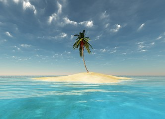 island in the ocean with a palm tree
