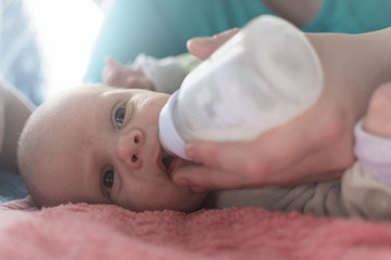 Newborns drink milk from the bottle