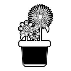 flowerpot  vector illustration